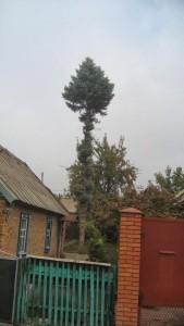 Kalantyrovka-069