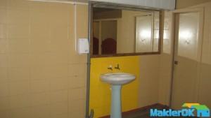 tualet_dovzhenko 006