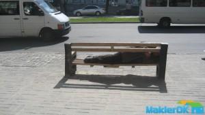 Spyaschie_v_Zaporozhie 020