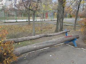 Nicolaev 043