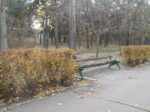 Nicolaev_ 042