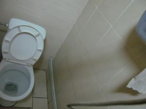 Besplatniy_tualet_vo_Lvove 118