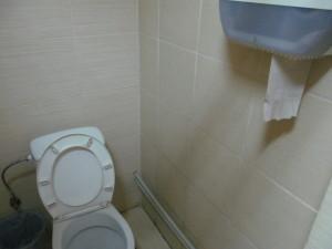 Besplatniy_tualet_vo_Lvove 119